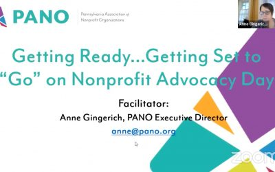 Advancing the Region by Strengthening Nonprofits: A Talk with Anne Gingerich